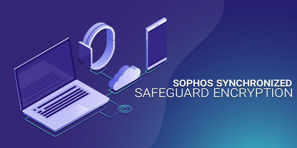synchronized encryption safeguard